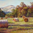 'Coulson's Hay' by Lynda Robinson