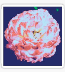 Floral Flower Art - Retro Rose Navy and Pink Vintage Flowers Sticker