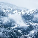 Georgia in Winter by Svetlana Sewell