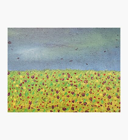 Meadow At Dusk Photographic Print