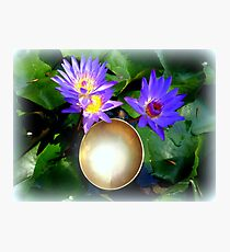 Lilies and Singing Bowl Photographic Print