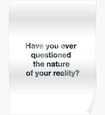 Westworld: question reality Poster