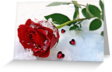 To Make You Feel My Love by Morag Bates