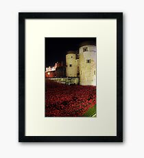 Poppies at the Tower of London - Night #3 Framed Print