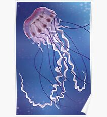Purple Striped Jellyfish Poster