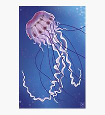 Purple Striped Jellyfish Photographic Print