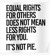 Equal rights for others does not mean less rights for you. It's not Pie. Poster
