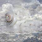 Ocean Tide by Crista Peacey