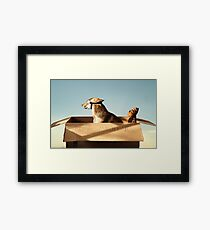 Jack and Hobbes Framed Print