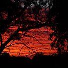 Red Sky by Deirdreb