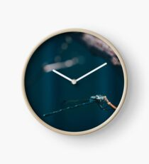 Eye of the Dragonfly Clock