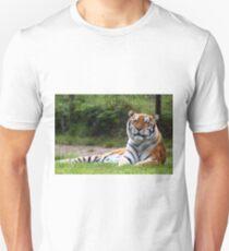 Amur Tiger (Siberian) Unisex T-Shirt