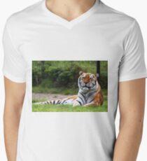 Amur Tiger (Siberian) Men's V-Neck T-Shirt