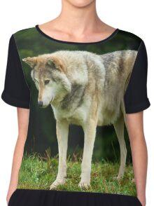 European Timber wolf Chiffon Top