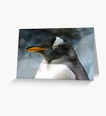 Sleepy Snowy Penguin Greeting Card