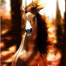 horse von Jenny -  DESIGN