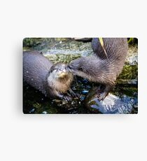Otterly in Love Canvas Print