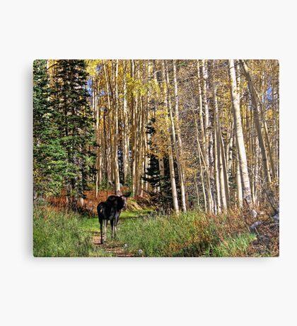 To Hike With A Moose Metal Print