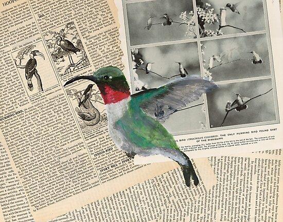 Humming Bird by CassTebeau