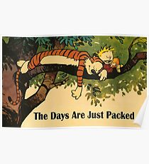 Calvin and Hobbes The Days Are Just Packed Poster