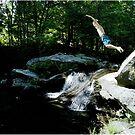 Leap of Faith by Wayne King