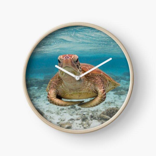 Turtle yoga pose Clock