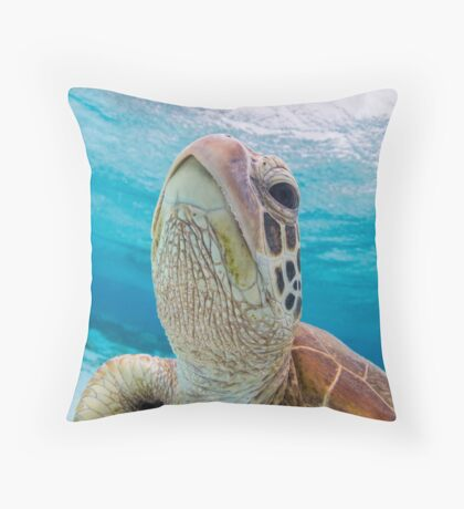 Turtle close-up Throw Pillow