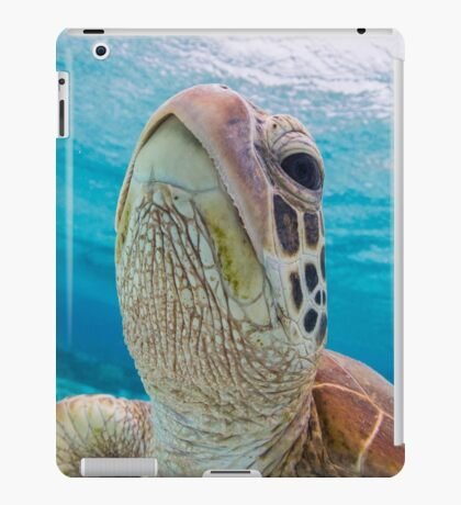 Turtle close-up iPad Case/Skin
