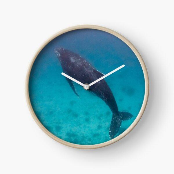 Whale wonders - print Clock