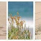 By the Beach Triptych by Kathie Nichols