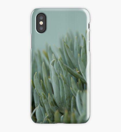Green bananas iPhone Case/Skin