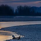 Fraser River West II by Jean Poulton