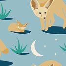 Fennec Fox by elenakballam