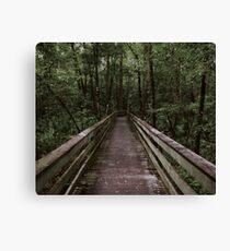 Adventure Trail Canvas Print