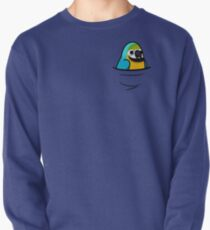 Too Many Birds! - Blue & Gold Macaw Pullover