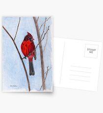 Cardinal Postcards