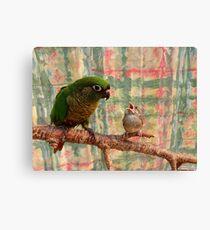 Everybody Needs A Little Encouragement - Sparrow & Parrot - NZ Canvas Print