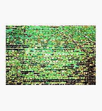 Art Green Wall Photographic Print