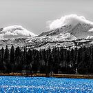 Two Out of Three/Black Butte Ranch by Richard Bozarth