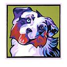AUSTRAILIAN SHEPERD DOG by Pat McNeely