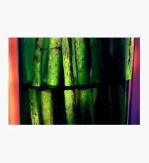Green macro Photographic Print
