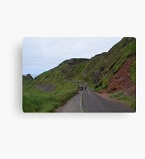 Giants Causeway Northern Ireland Canvas Print