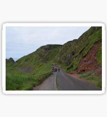 Giants Causeway Northern Ireland Sticker