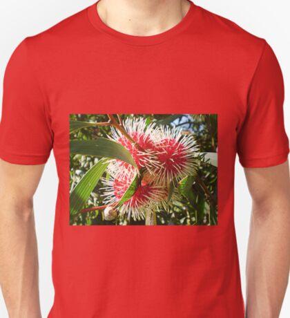 Hakea - Pin Cushion Tree - Australian Native T-Shirt