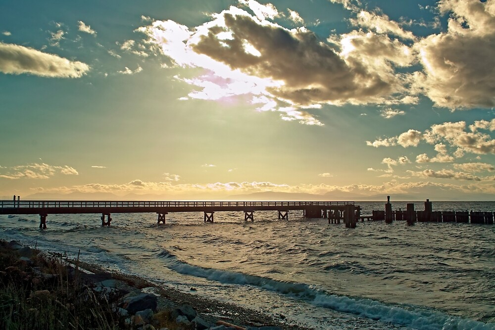 Sunshine Coast 7 by Priscilla Turner