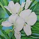Hawaiian White Ginger by joeyartist