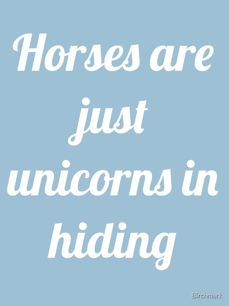 Unicorns in Hiding by Birchmark