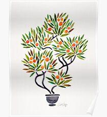 Bonsai Tree – Orange Fruit Poster