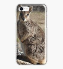 Rock Wallaby - Granite Gorge Nature Park iPhone Case/Skin