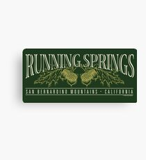Running Springs Canvas Print